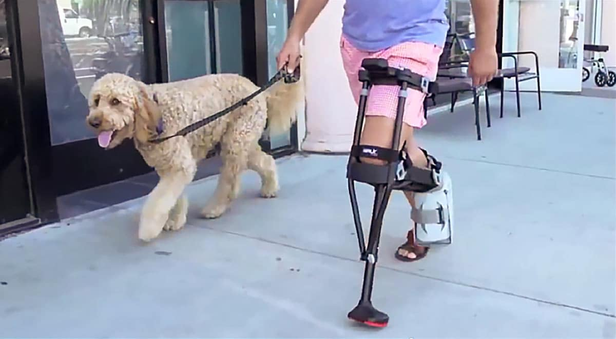 Walk Dog Crutches
