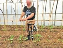 Harold-garden-crutches-2-220x167
