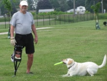 Malcolm-dog-frisbee-knee-walker-ruptured-achilles-3-220x167