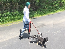Patricia-Grimm-with-Dogs
